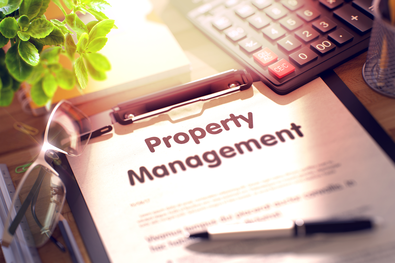 Property management system: come ottenerlo con Beesprint